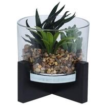 Koopman Aranjament decorativ de plante  suculente artificiale, 14 cm