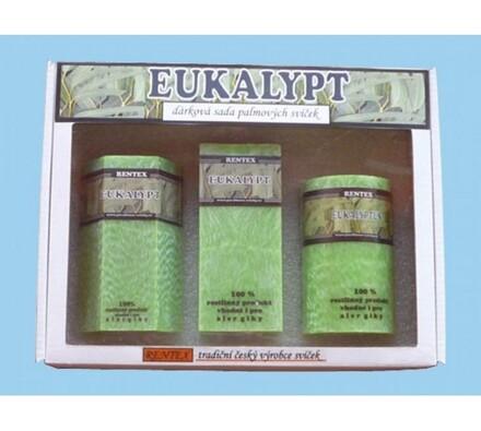 Dárková sada palmových svíček eukalyptus