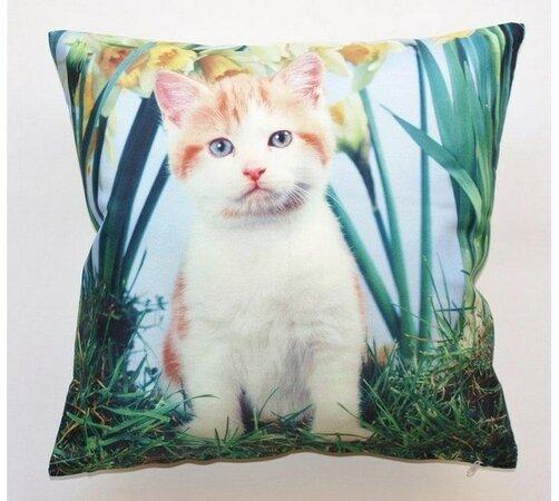 Povlak na polštář kočka, 40 x 40 cm, vícebarevná, 40 x 40 cm