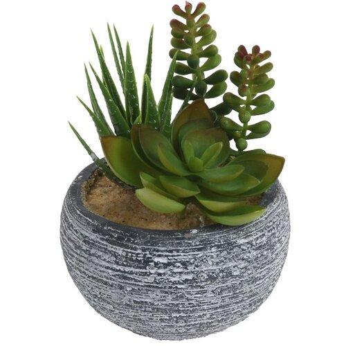 Soledad dekoratív pozsgás műnövények, 15 cm