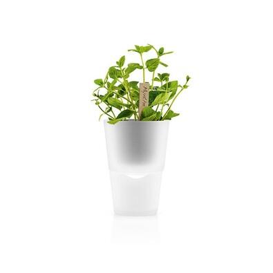 Samozavlažovací květináč 13 cm, matné sklo