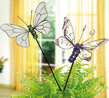 Fosforeskující motýl