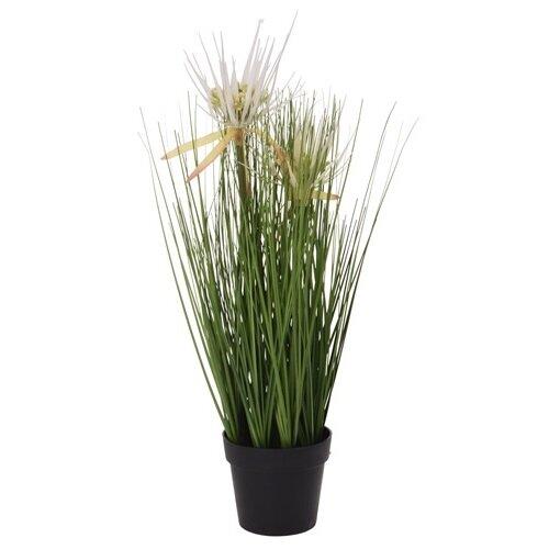 Koopman Umělá kvetoucí tráva Tracey, 46 cm
