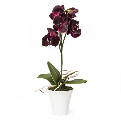 Umělá orchidea v květináči tmavě fialová