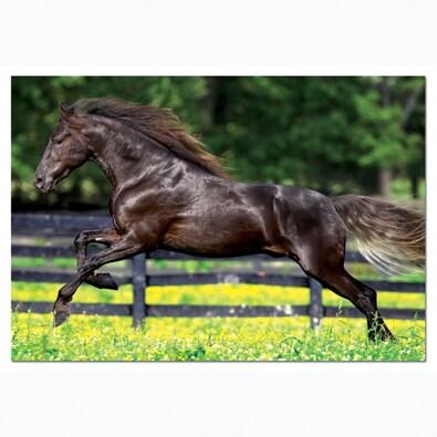Puzzle Kůň