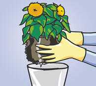 Úklidové rukavice
