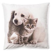 Obliečka na vankúšik Šteňa a mačiatko maznáčikovia 6,  40 x 40 cm