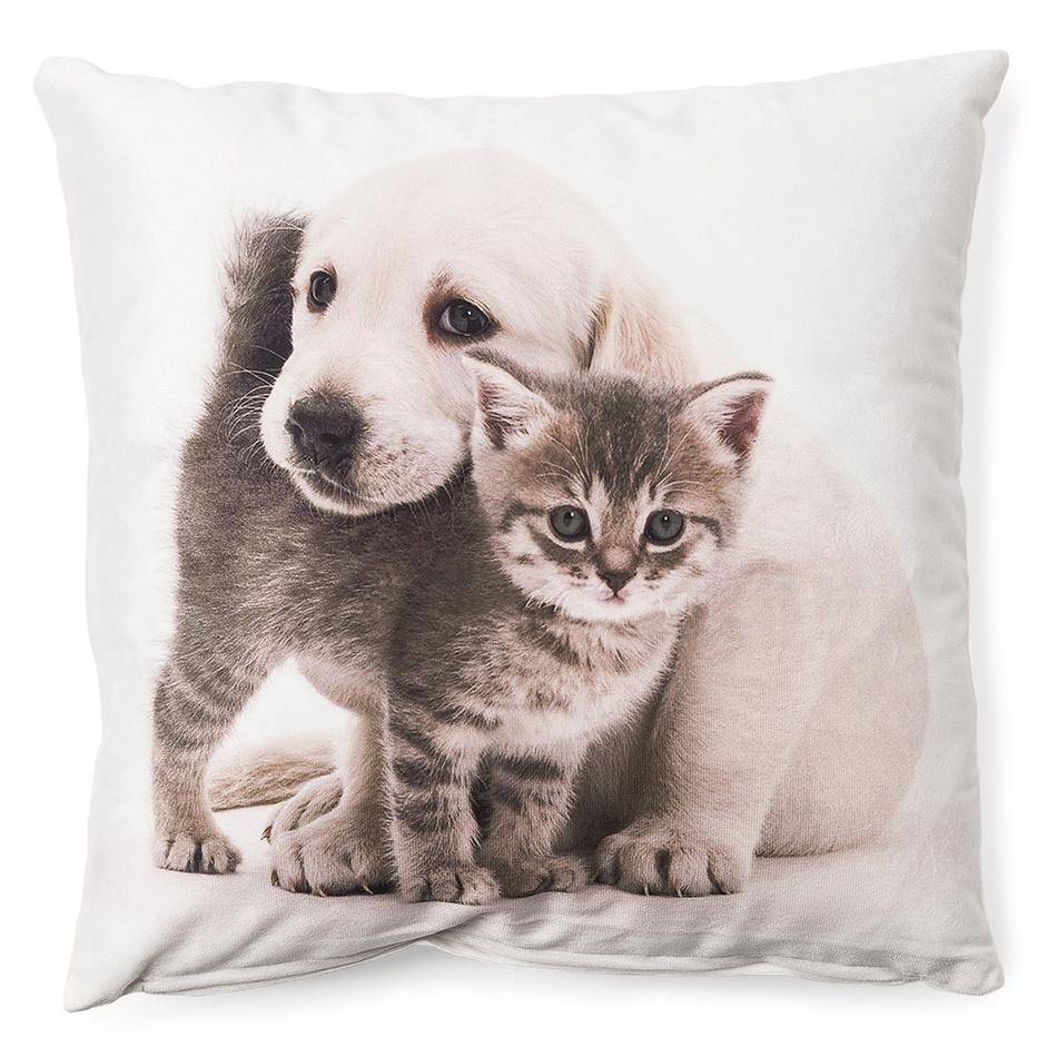 BO-MA Trading Povlak na polštářek Štěně a kotě mazlíci 6, 40 x 40 cm
