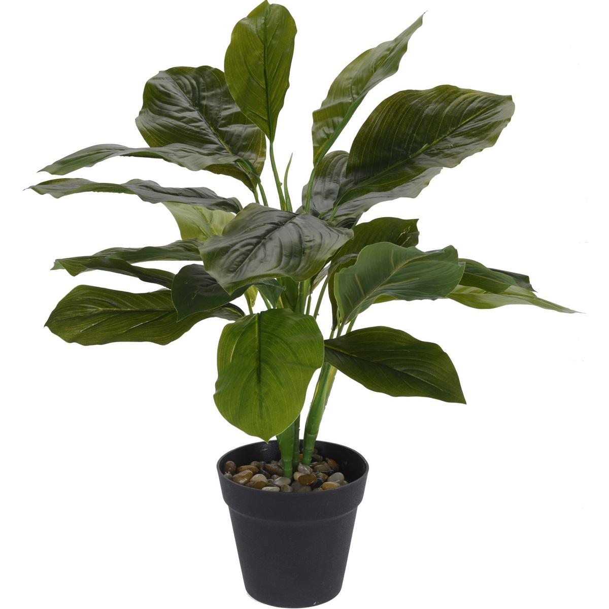 Koopman Umělá rostlina v květináči Rori, 45 cm