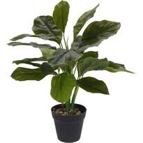 Koopman Sztuczna roślina w doniczce Rori, 45 cm