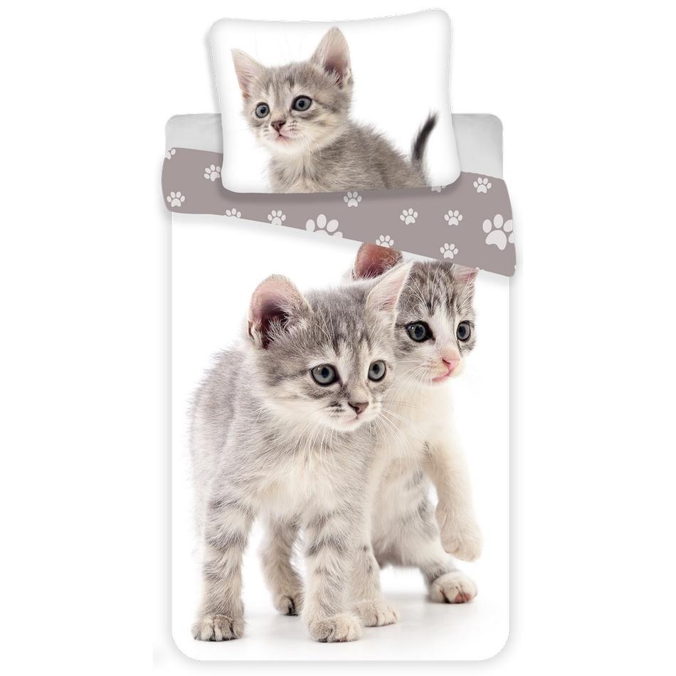 Jerry Fabrics Dětské bavlněné povlečení Kitten grey, 140 x 200 cm, 70 x 90 cm