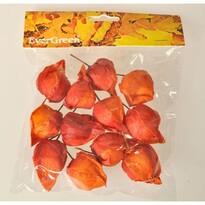 Podzimní dekorace Mochyně plod v. 4 cm, 12 ks