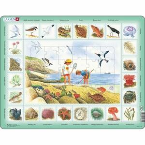 Larsen Puzzle Život u moře, 48 dílků