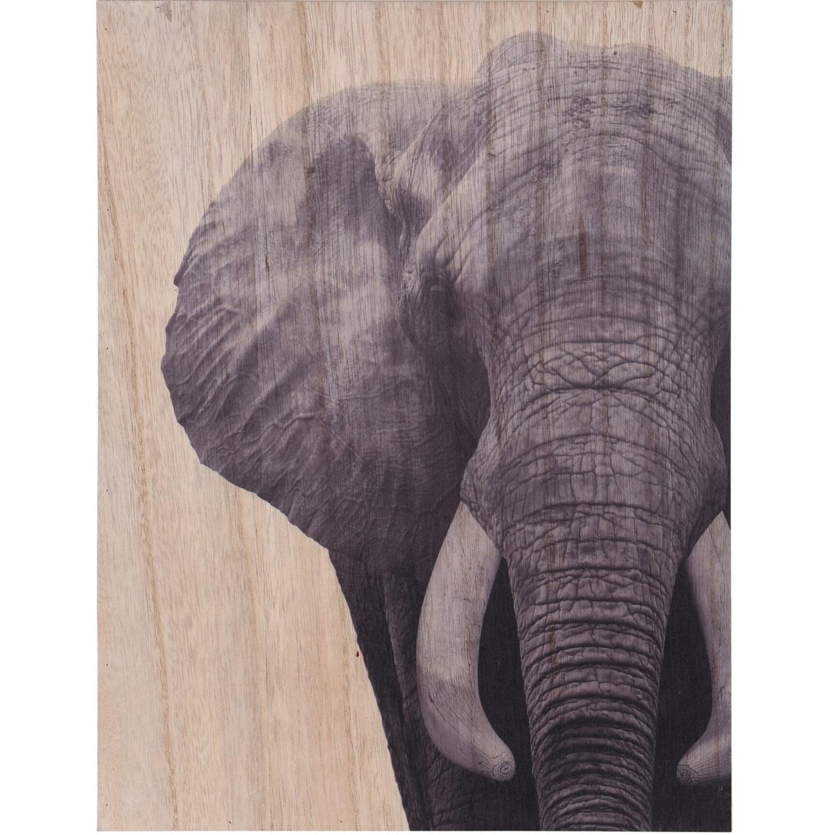 Obraz na dřevě Elephant, 28 x 38 cm
