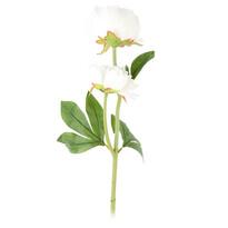 Bazsarózsa művirág, fehér, 58 cm