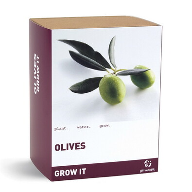 Olivovník Grow It
