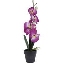 Sztuczna orchidea w doniczce różowy, 38 cm