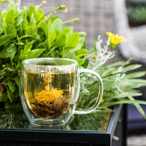 4home Termo pohár Big Tea Hot&Cool 480 ml, 1 ks