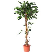 Umelý strom Ficus exclusive, 170 cm