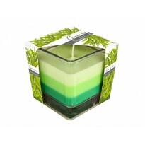 Szivárvány Zöld tea gyertya üvegpohárban, 170 g