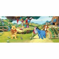 Dětská fototapeta Medvídek Pú a přátelé, 202 x 90 cm
