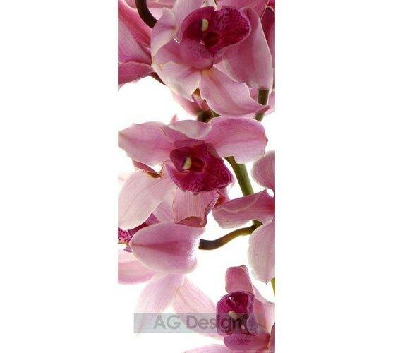 Fototapeta Orchidej 90 x 202 cm, Hornschuch