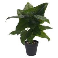Koopman Umělá rostlina v květináči Brendie, 45 cm