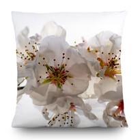 Polštářek Flowers, 45 x 45 cm