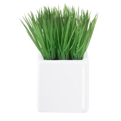 ASA Selection umělá květina v květináč mini grass 11753