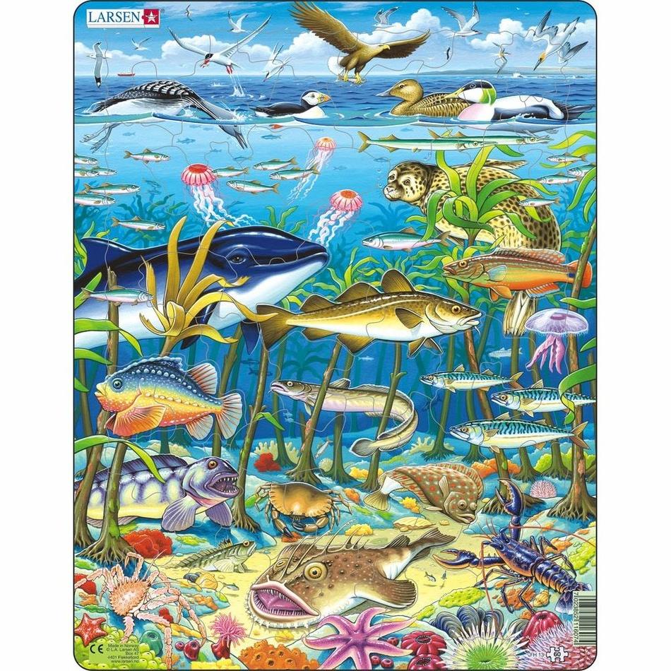Larsen Puzzle Zvieratá v mori, 60 dielikov