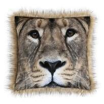 Perniță SAFARI Leu, 45 x 45 cm