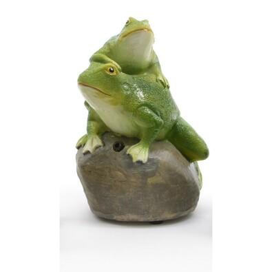 Kvákajúce žaby na kameni