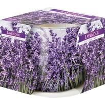 Lavender illatgyertya üvegpohárban, 100 g, 7,2 cm